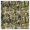 Hydrographic Film - Water Transfer Printing - Hydro Dipping -Reeds Camo 2 - U3E1