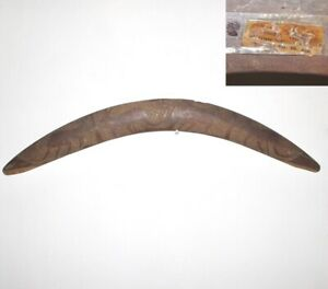An Aboriginal Boomerang. Australia. Kangeroos. Ooldea Tribe. Old Label.
