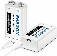 Enegon Batterie 9V Usb Directe Rechargeable Lithium-Ion Avec Câble Micro Usb 2