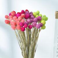 Decor Bouquet Decorative Amaranth Dried Flowers Artificial Flowers Fake Flowers