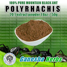 100% PURE & WILD Mountain Ant Vic. Roger  Polyrhachis 20:1 Extract powder 50g.
