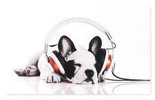 Bild Keilrahmen Hund Welpe Kopfhörer weiß schwarz 78x118cm