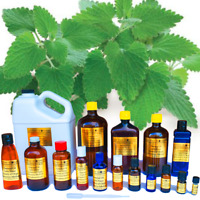 Catnip Essential Oil - 100% PURE NATURAL UNCUT - Sizes 1 ml to 16 oz - WHOLESALE
