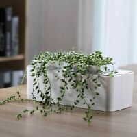 Smart Herb Garden Kit Nursery Pot Desk Plants Flower Hydroponics Indoor Grow Set