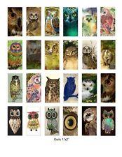 """Owls - 1""""x2"""" Altered Art Images Collage Sheet Laser Print - BEST SELLER"""