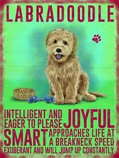 LABRADOODLE, Colourful Metal fridge magnet Sign, DOG,