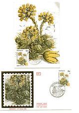 """MONACO """" Plantes du Mercantour  """". Carte et envelopp  e 1er jour sur soie"""