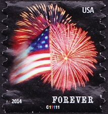 US - 2014 - Flag & Fireworks Star Spangled Banner Issue Plate C11111 Single 4853