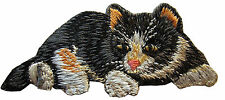 "#3796 3-1/2"" Japanese Bobtail Cat Embroidery Iron On Applique Patch"
