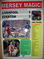 Liverpool 3 Everton 2 - 1989 FA Cup final - souvenir print
