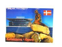 Copenhague Sirenita Opera 3D Madera Recuerdo Deluxe Imán Dinamarca Nuevo