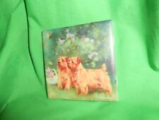 "Norfolk Terrier 4"" x 4"" Ceramic Art Tile Free Shipping"