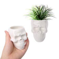 Creative Skull Ceramic Flower Pot Green Succulent Planter Plant Container Decor
