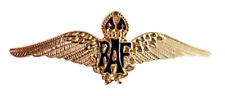 RAF Royal Air Force Sweetheart Wings Gilt Pin Badge - MOD Approved