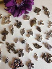 15 otoño invierno otoño Mezclados Charms De Plata Árbol De Hojas Ardilla bellota de bronce