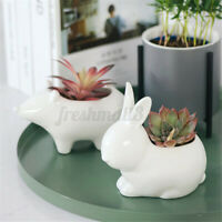 Ceramic Animal Shape Planter Flower Plant Vase Succulent Pot Planter Desk