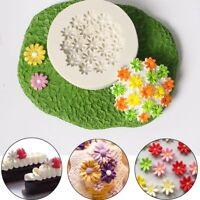 cours de pâtisserie la fleur du silicone outil de cuisson fondant la moisissure