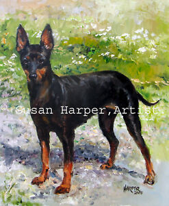 SALE English Toy Terrier Signed Dog Print by Susan Harper Unmounted