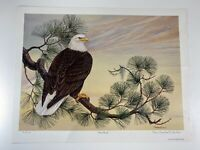"Anne Worsham Richardson ""Bald Eagle"" Signed Print 49/1000 18.25"" x 23.5"" Bird"