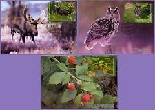 Kazakhstan 2020. 3 Maxicard. Fauna. West Altai Nature Reserve. Maximum cards.