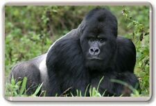 Gorilla Fridge Magnet 02