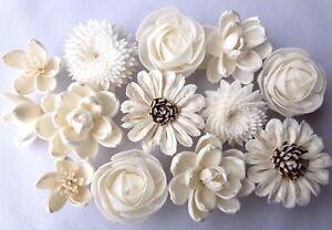 Mix Flower Sola Balsa Wood Diffuser Craft Decor Home Spa Fragrance Bouquet Bride