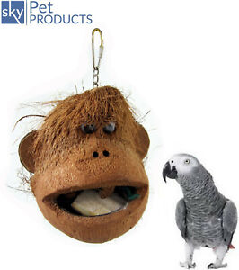 JAVA COCO MONKEY LARGE  PARROT TOY AFRICAN GREY CAGE BIRD HANGING TOY 7602
