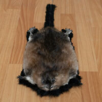 SMALL BEAVER TAXIDERMY RUG MOUNT WITH HEAD - PELT, FUR, SKIN, HIDE FOR SALE