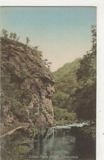 Lion Face Rock, Dovedale Postcard, B369