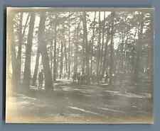 Deutschland, Berlin, Wannsee  Vintage silver print. Vintage Germany Tirage arg