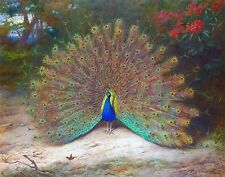 "Archibald Thorburn, Peacock, Butterfly, Birds, antique decor, 20""x16"" ART PRINT"