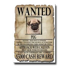 funny dog posters ebay