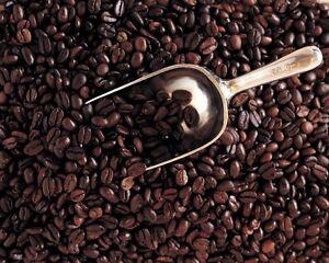 5 Pounds Bali Blue Moon Organic RFA, Fresh Medium/Dark Roast Coffee Beans