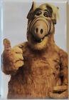 Alf 2' x 3' MAGNET Refrigerator Locker Image 2
