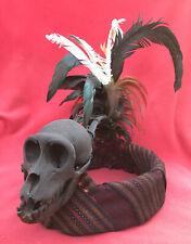 Dayak Headhunter Shaman Crown With Feathers &  Skull ~ Borneo