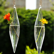 Cute Glass Olive Shape 1 Hole Flower Plant Hanging Vase Home Wedding Decor