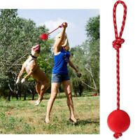 Training On a Rope for Small Dogs Pet Supplies Chew Toys Tug Balls Dog Ball