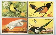 4 Dowst Tootsietoy Birds cards 1950s Card American Egret Oriole MAGPIE GOLDFINCH