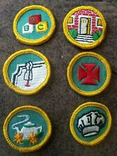 6 Girl Scout Merit Badges