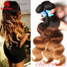3 Bundles 8A Brazilian Remy Virgin Human Hair Body Wave Extensions Ombre 3 Tone