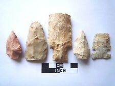 Native American des pointes x 5, véritable archaïque Artifacts, 1000BC-8000BC (963)
