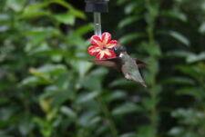 Hummingbird feeder tubes BN set of 20