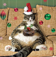 Fat Cat & Christmas Pudding Charity Christmas Cards Pack of 5 Fun Cat Xmas Cards