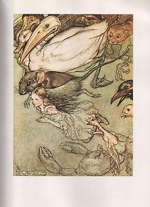 Arthur Rackham Print  - Alice's Adventures In Wonderland By Lewis Carroll