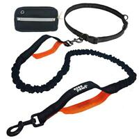 Ezee Paws Hands Free Running Jogging Dog Lead Dog Walking Reflective Belt
