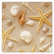Kühlschrank - Magnet: Strandleben: Muscheln, Schnecken und Seesterne