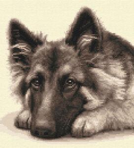 GERMAN SHEPHERD DOG, pup, ALSATIAN full counted cross stitch kit *Jann Designs