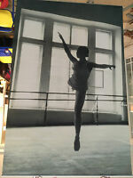 Pottery Barn Teen Ballerina Wall Mural Dancer SOLD OUT NEW IN PACKAGE