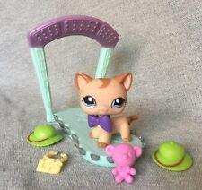 Littlest Pet Shop Lps Rare Caramel Swirl Curl Short Hair Cat 1024 w/ accessories