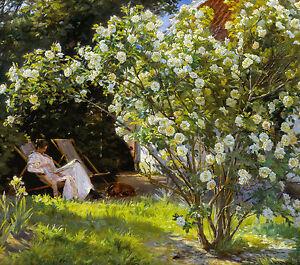 P.S. Krøyer, Roses. Marie Krøyer seated in the deckchair in garden, Canvas Print